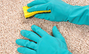 Protect Carpets from Stains